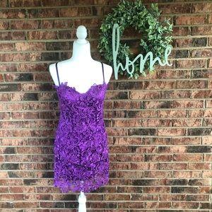 { DAVE & JOHNNY } NWT Purple Lace Crochet Dress